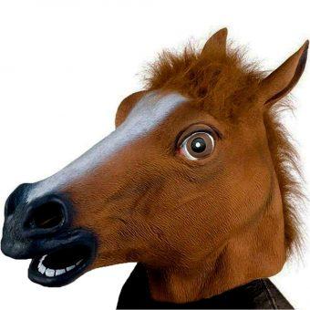 Bild von Pferdemaske